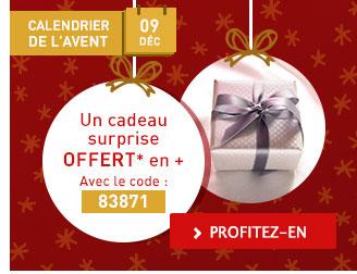 Calendrier de l'Avent : Cadeau surprise offert en +