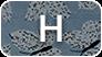 Lettre H