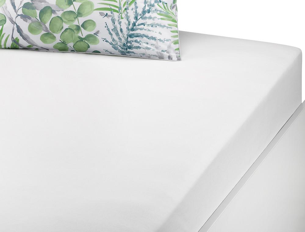 Drap-housse percale blanc Chlorophylle