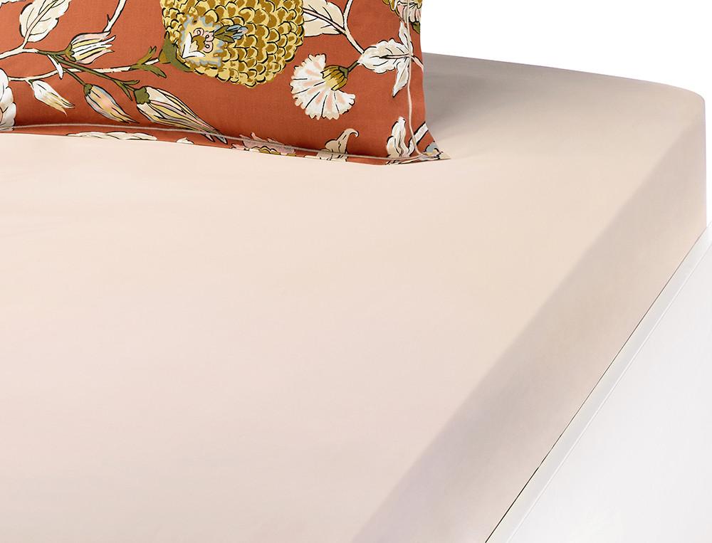 Drap-housse percale coton uni crème Parade en fleurs