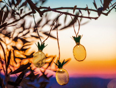 LED-Lichterkette für draußen mit 20 Ananas-Lämpchen Sonnenanbeter