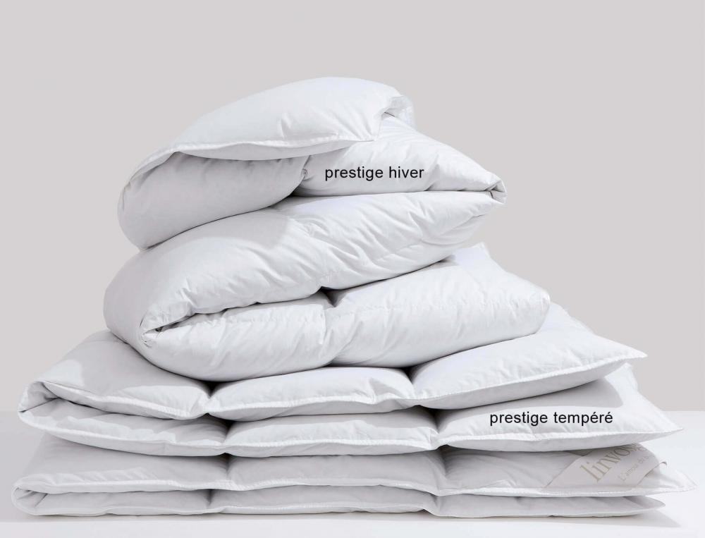 Édredon Prestige hiver canard argenté 300g/m2 enveloppe percale
