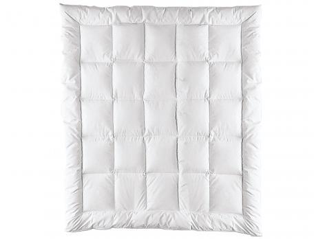 Édredon Prestige hiver canard blanc 300g/m2 enveloppe percale