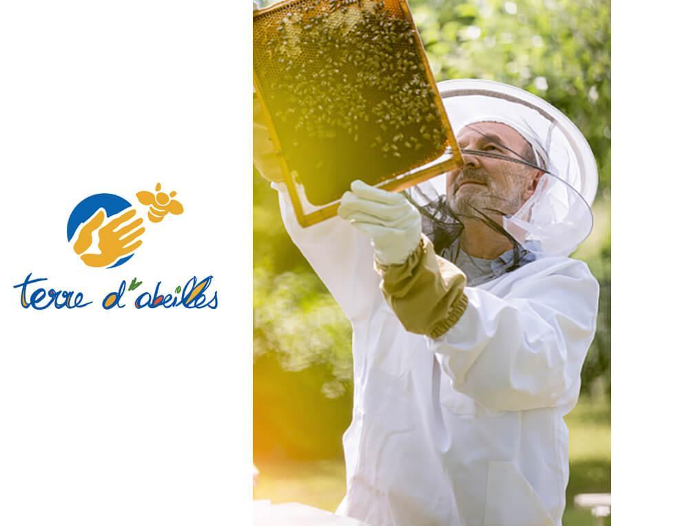 3 torchons jacquard Reine des abeilles