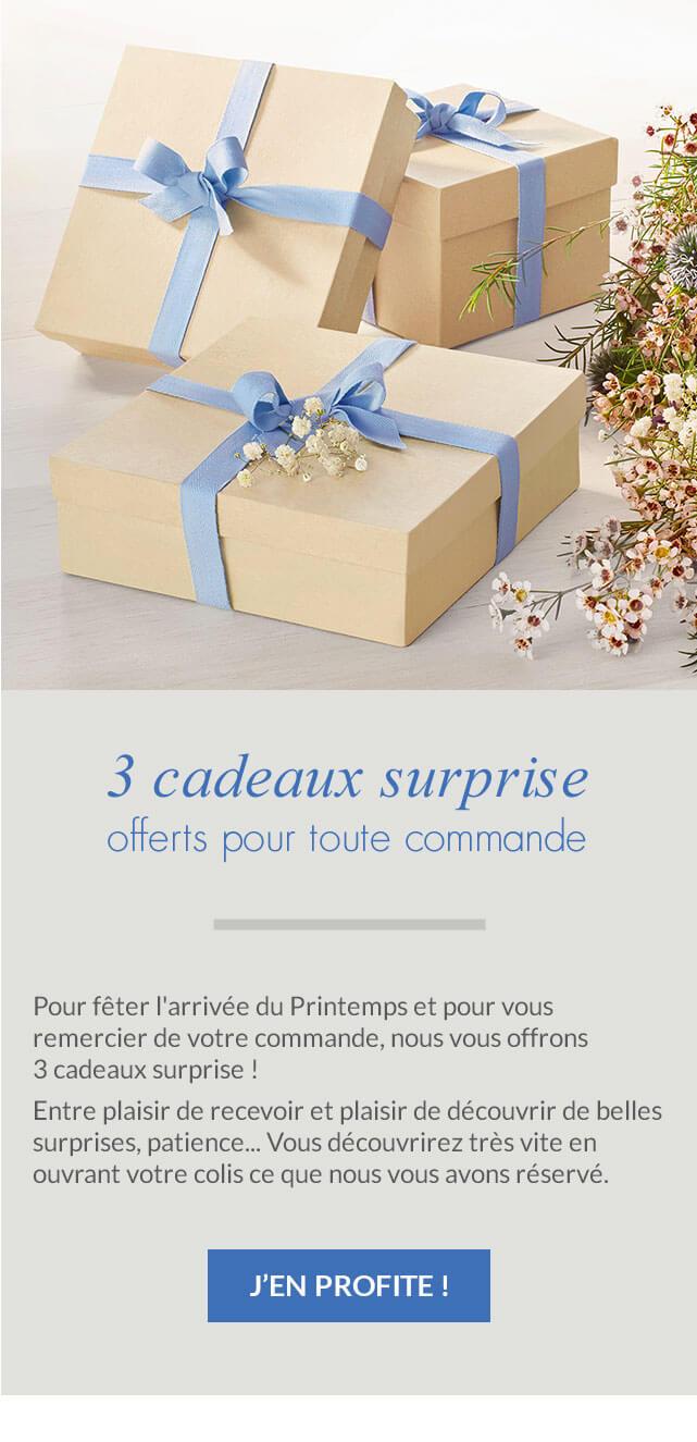 3 cadeaux surprises offerts pour toute commande Linvosges