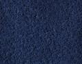 Pfauenfeder blau