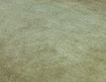 Farbkasten moosgrün