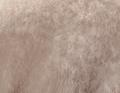 Tabriz sable